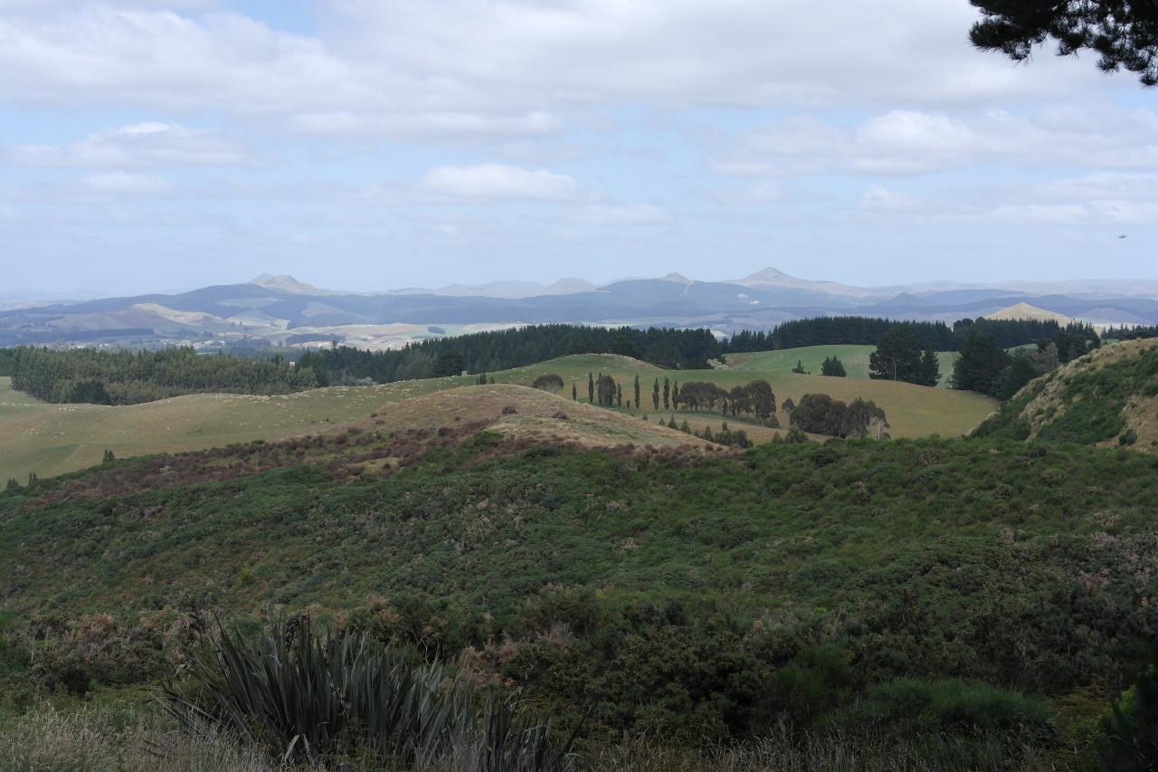 008 Otago Spiky Mountains
