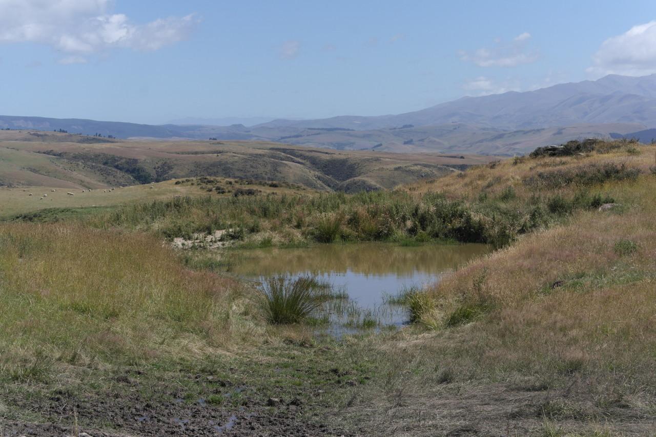 Ein kleiner Tümpel in der kargen Landschaft