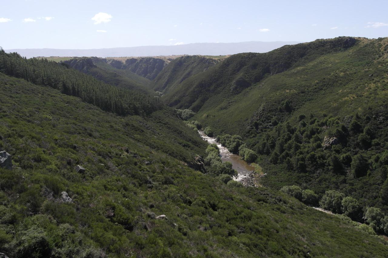 Langsam erreicht der Zug das Plateau, in dem auch Middlemarch liegt