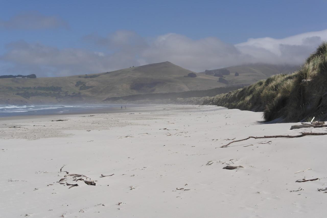 Der Strand ist unglaublich wild und schön