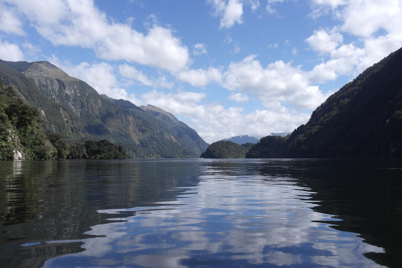 Blick in den Hauptfjord, kurz bevor es nach links in den Hall Arm geht.