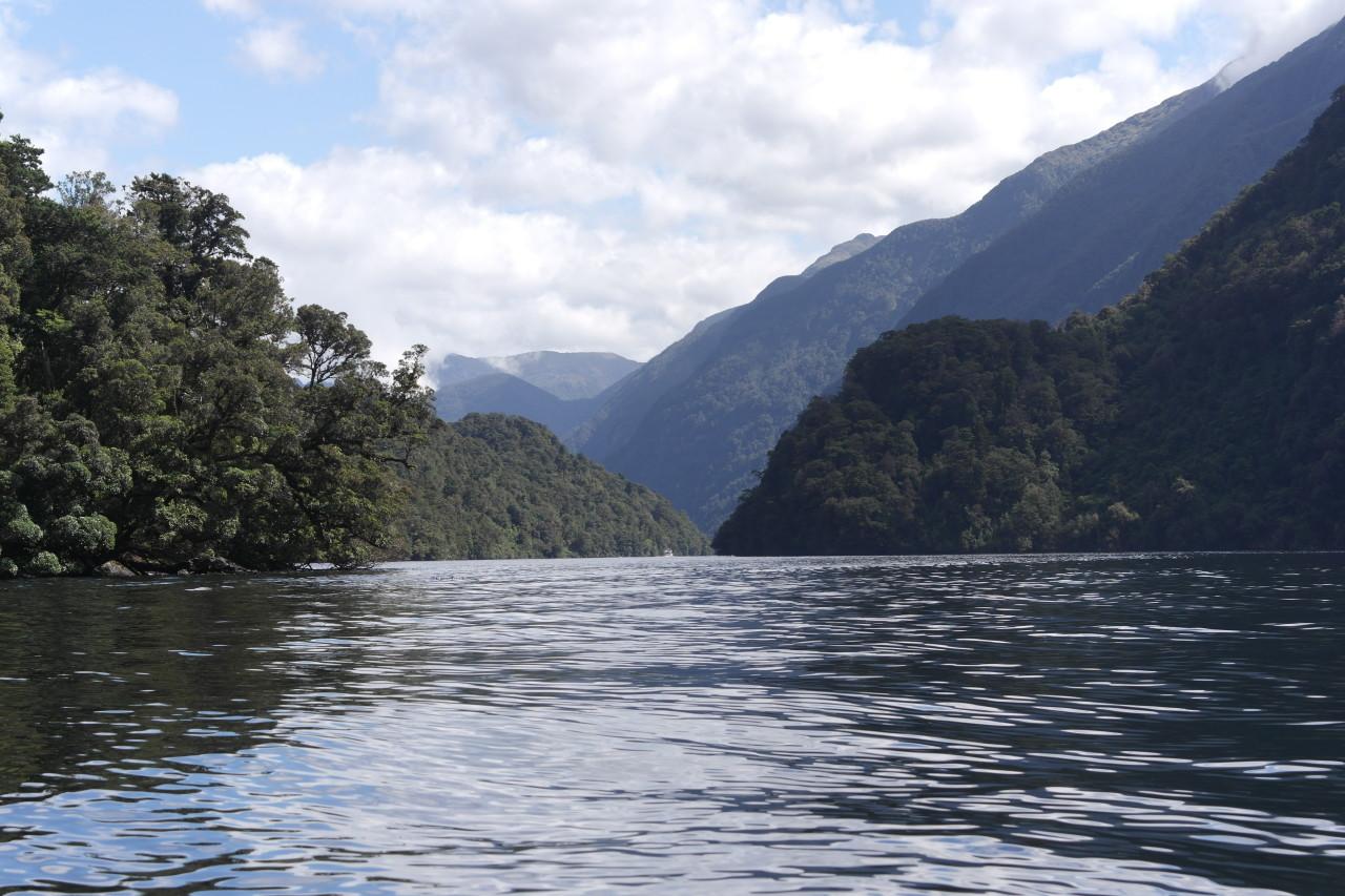 Ein letzter Blick zurück in den Hauptfjord.