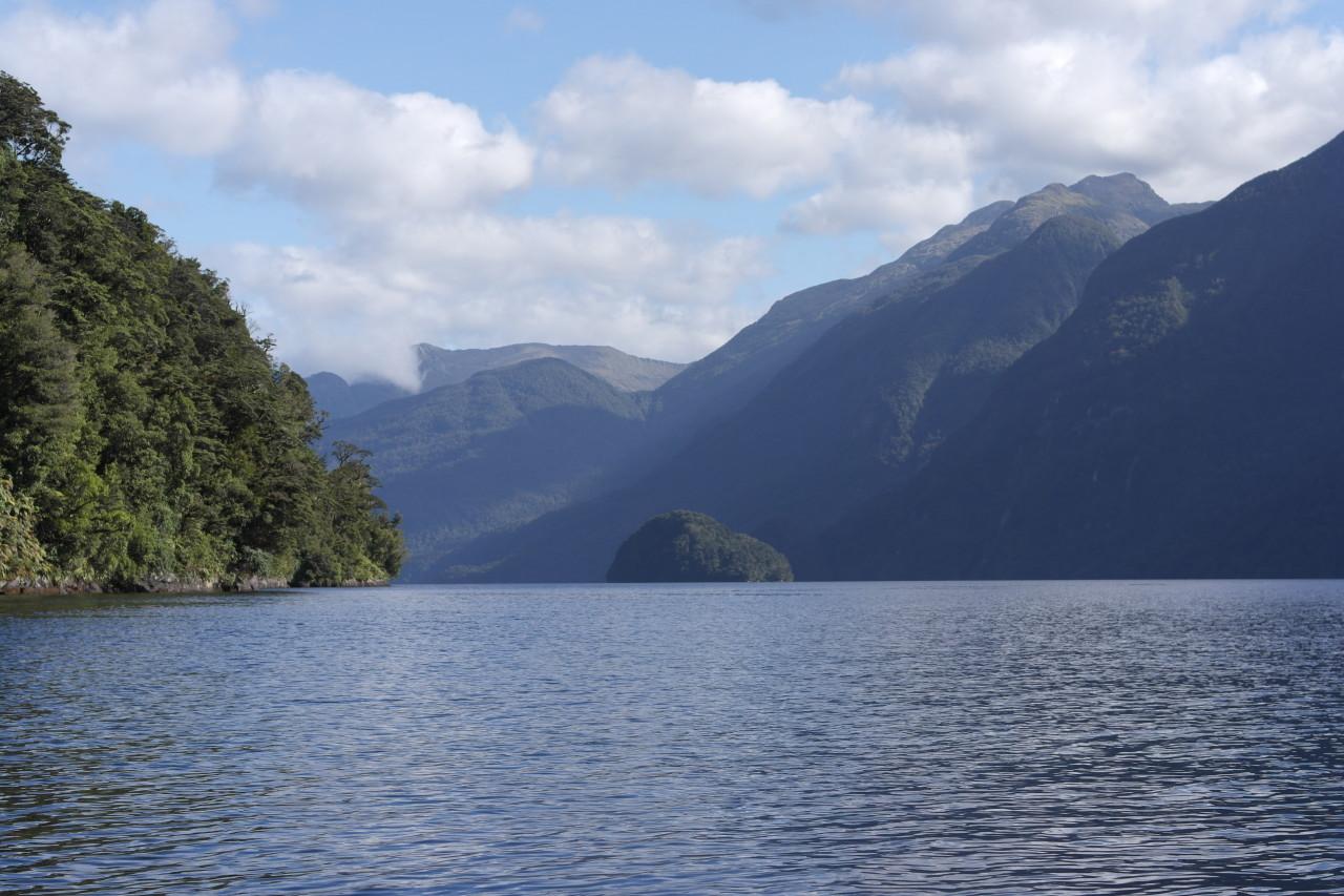 Elephant Island im Hauptfjord. Wir wurden lauthals von Möwen beschimpft, die dort brüten!