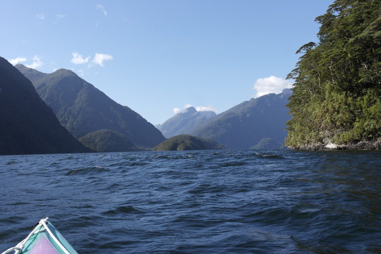 Wir paddeln um Elephant Island herum, um in einer kleinen Seitenbucht unsere Mittagspause zu machen.