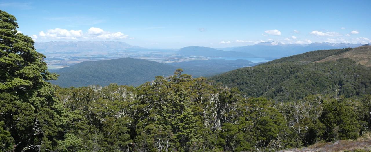 Blick auf den Titiroa mit Lake Manapouri davor. Hier bin ich knapp hinter der Baumgrenze.