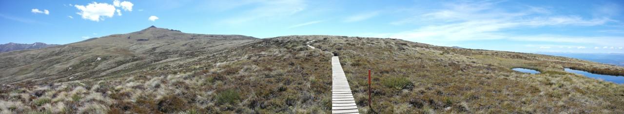 Der Weg war ab der Baumgrenze als Holzpfad gebaut, es ging über Grasland mit ein paar Tümpeln.