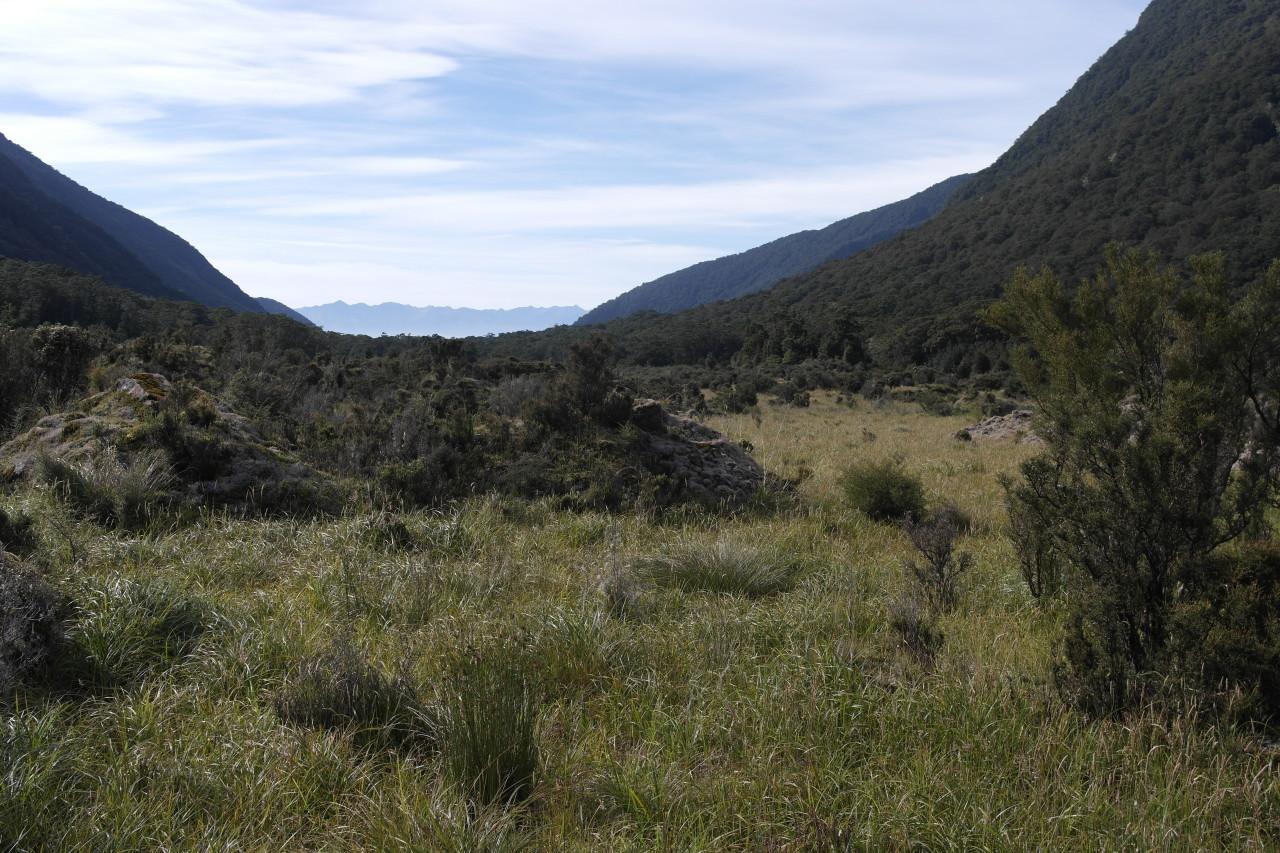 """Das breite Tal, in dem der sogenannte """"Big Slip"""" 1984 passiert ist. Am Ende des Tals liegt der Lake Manapouri."""