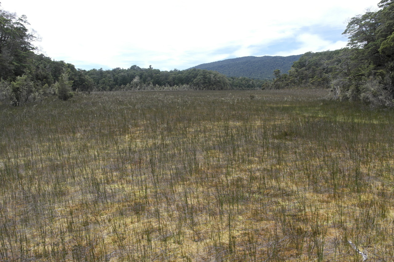 012 Kepler Track Day 3 Swamp