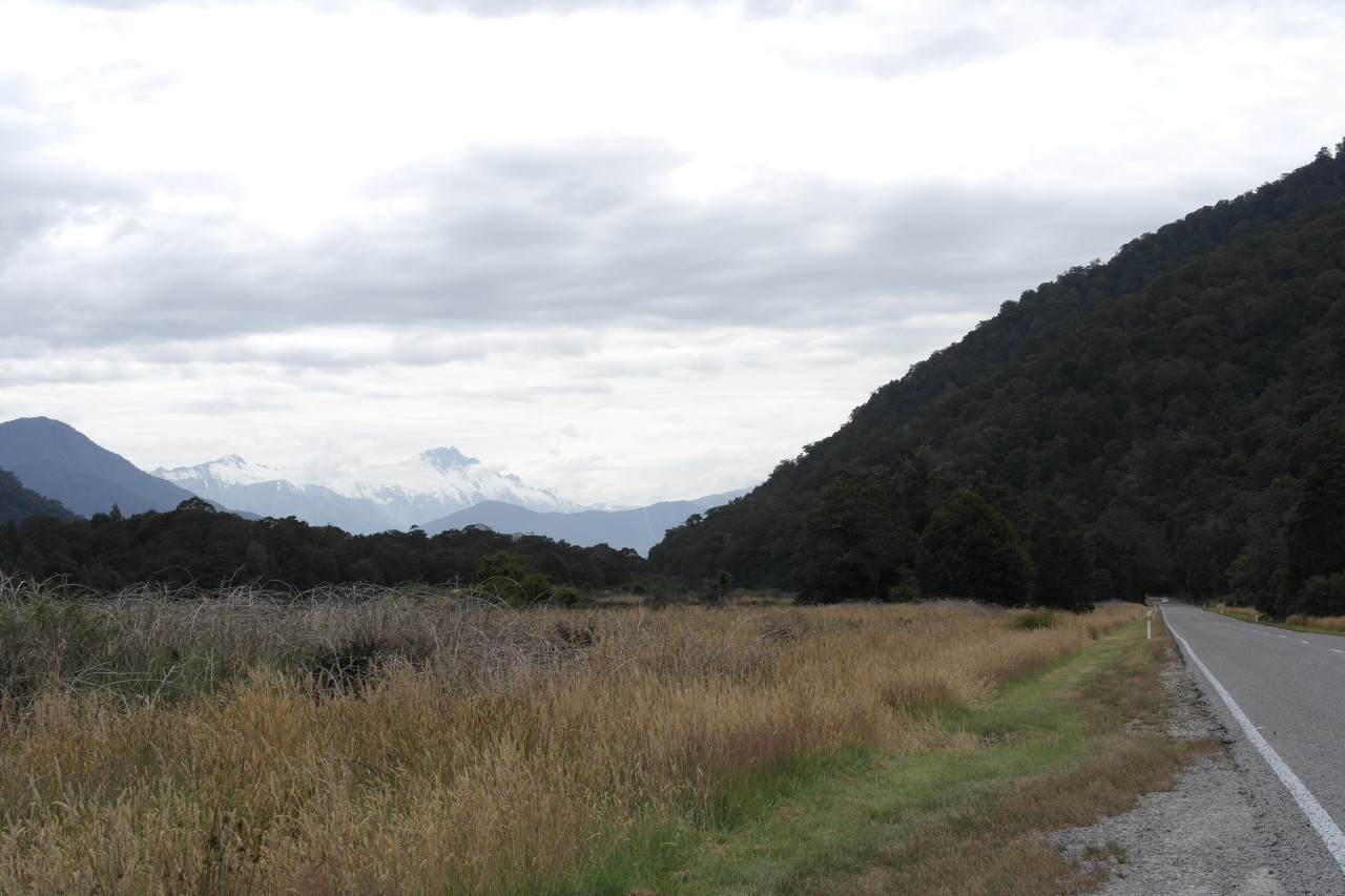016 To West Coast Westland Alps