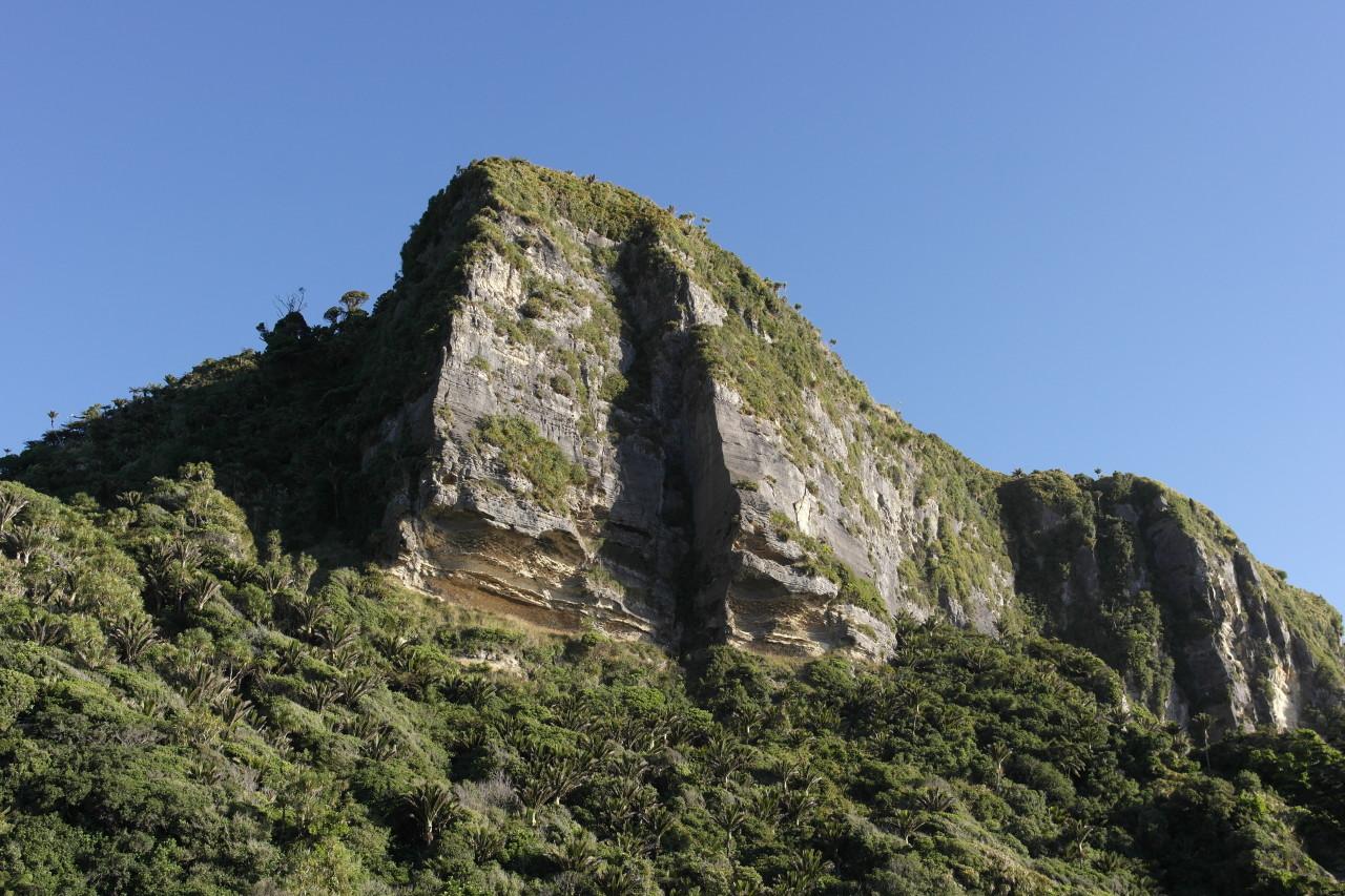 Dieser Felsen trohnt über Punakaiki, dem einzigen Ort im Nationalpark.