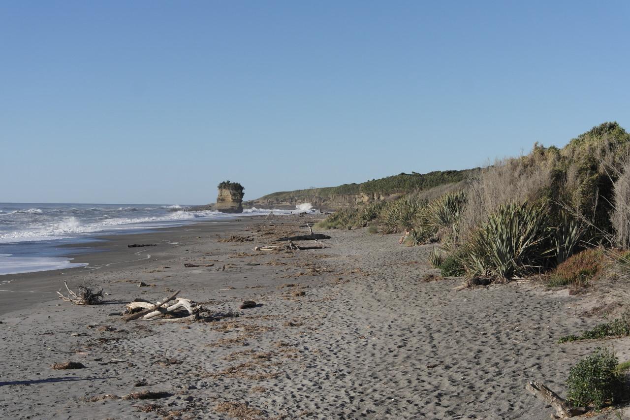 Ein letztes Stücken Felsen steht am Strand in Punakaiki.