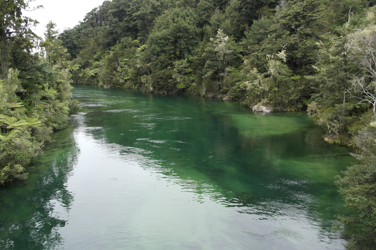 Der Fluss, der in die Sandfly Bay fließt. Ich mag das sandige Flussbett.