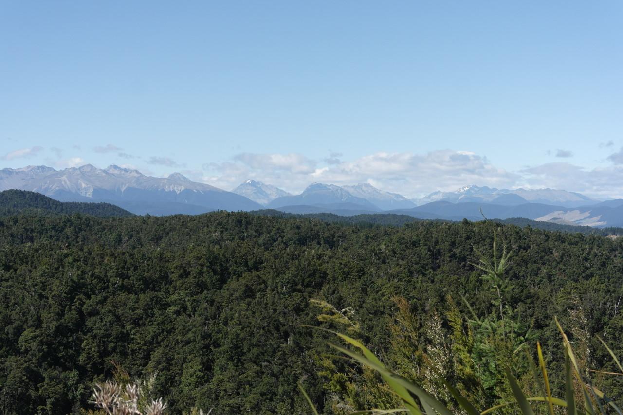 Berge im Nelson Lakes Nationalpark bei St. Arnaud.